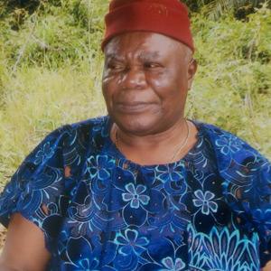 Dr. Reuben Okorie – DSG, Special Duties