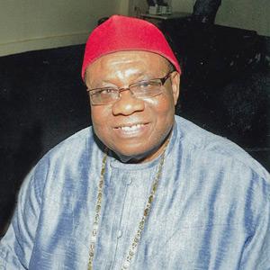 Dr. Ignatius Ukpabi – DSG, Government & Community Relations